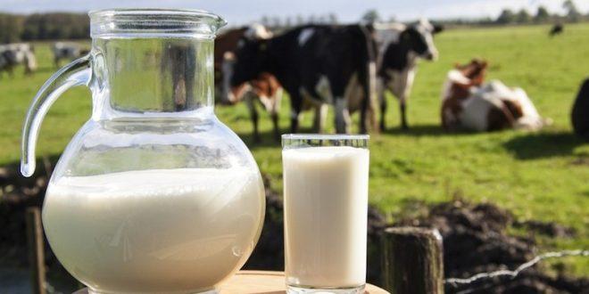 Assistência Técnica ao produtor de leite